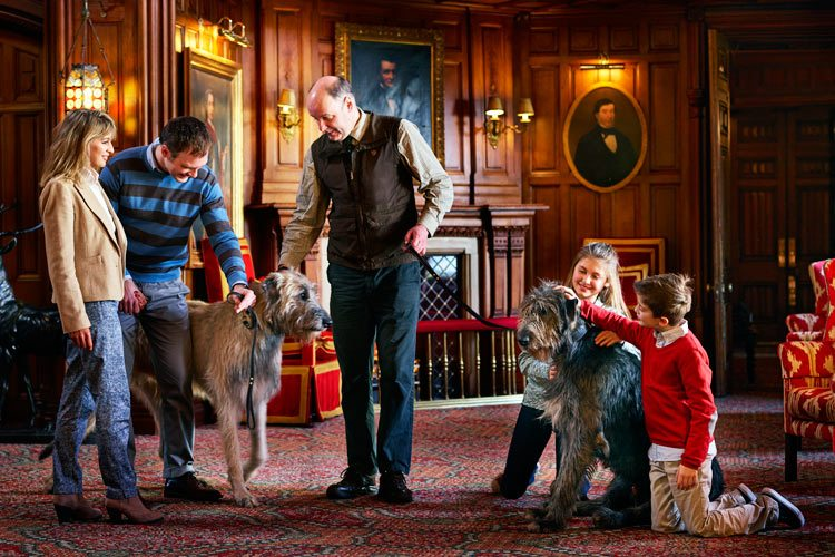 Ashford Castle kids and dogs