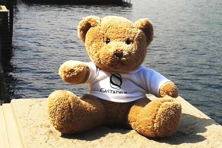 castadiva-teddy bear