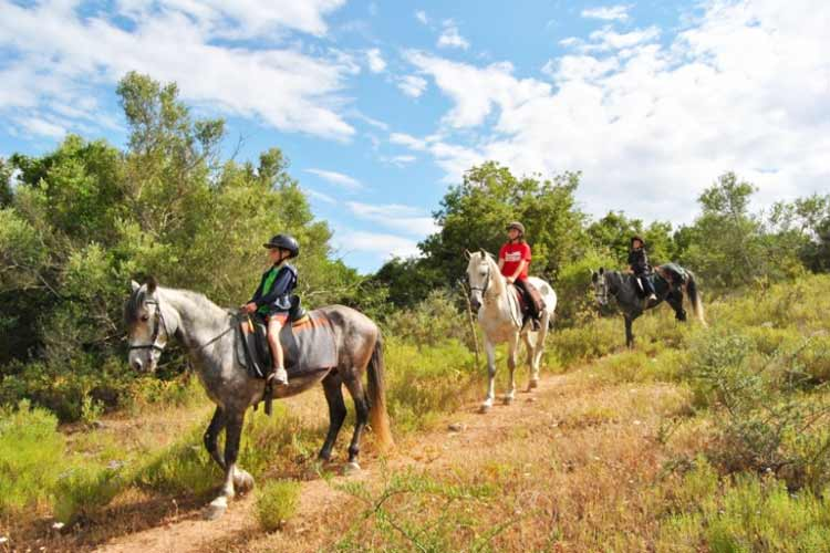 Martinhal Quinta Activity horse riding