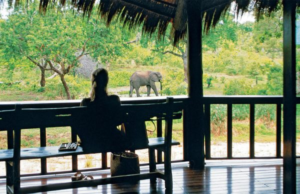 Watching the elephants from the terrace of Ulusaba Private Game Reserve