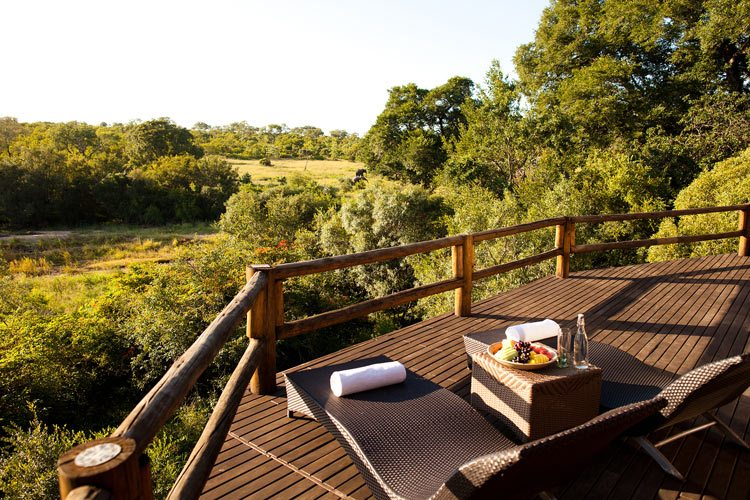 Deck chair view on the forest Ulusaba Private Game Reserve
