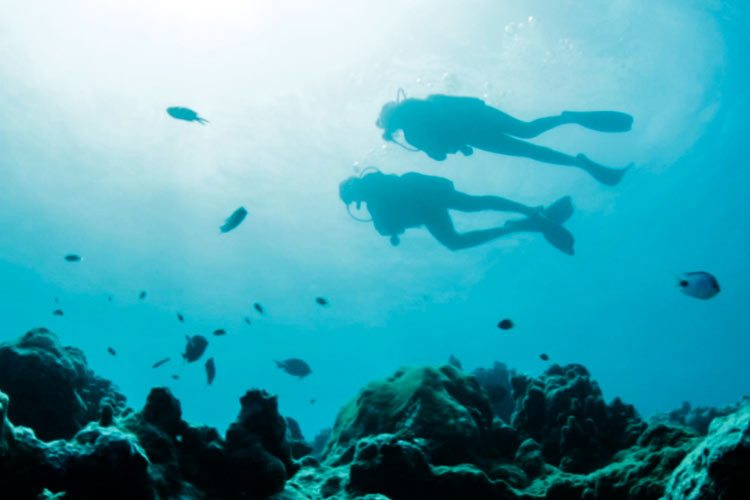 Lux Le Morne Mauritius-divers in the indian ocean