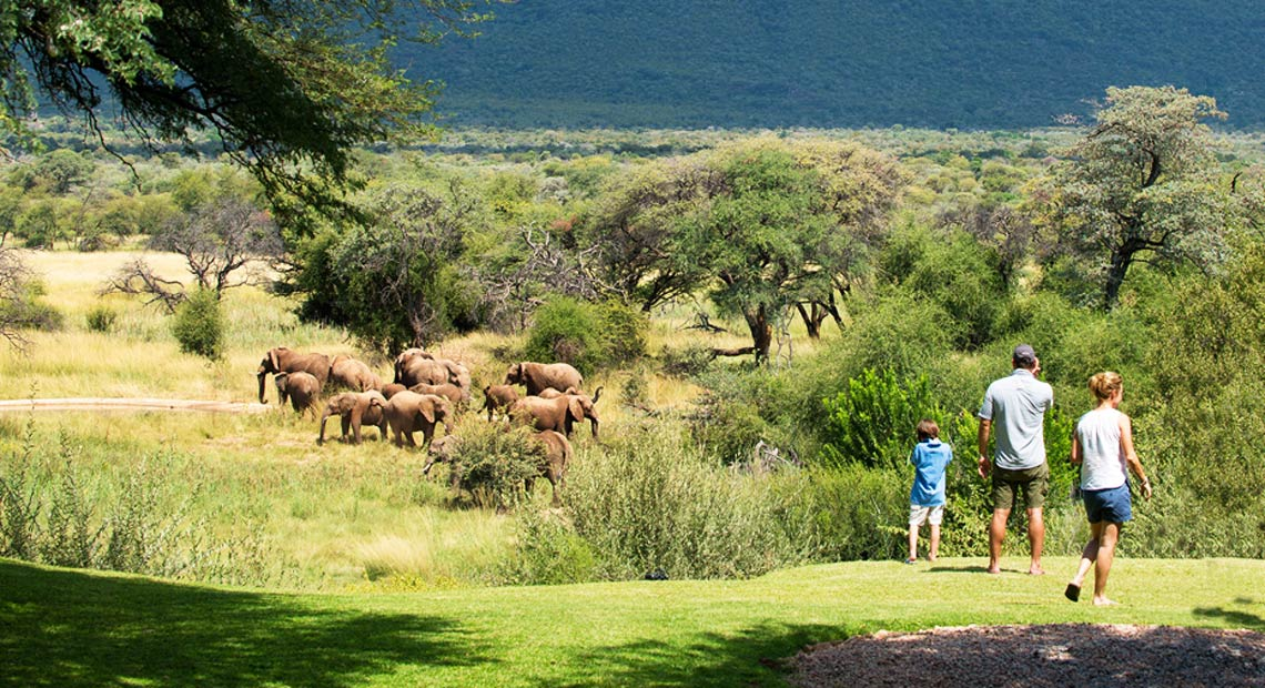Marataba Safari Lodge-family observing elephants