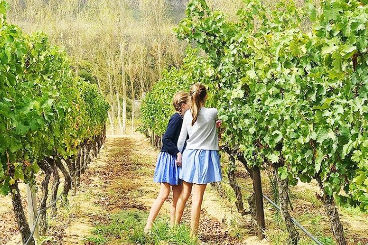 Mont Rochelle-girls playing in the vineyards
