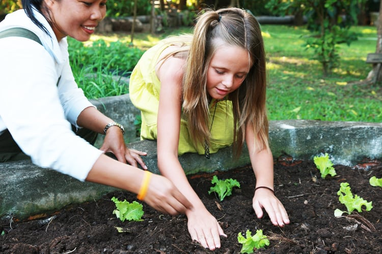 Gardening class for kids Soneva Kiri *****