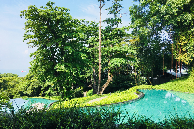 Outdoor pool and garden at Capella Singapore