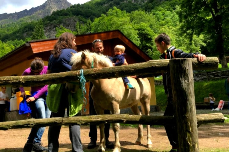Mirtillo Rosso Family Hotel Activity horse riding