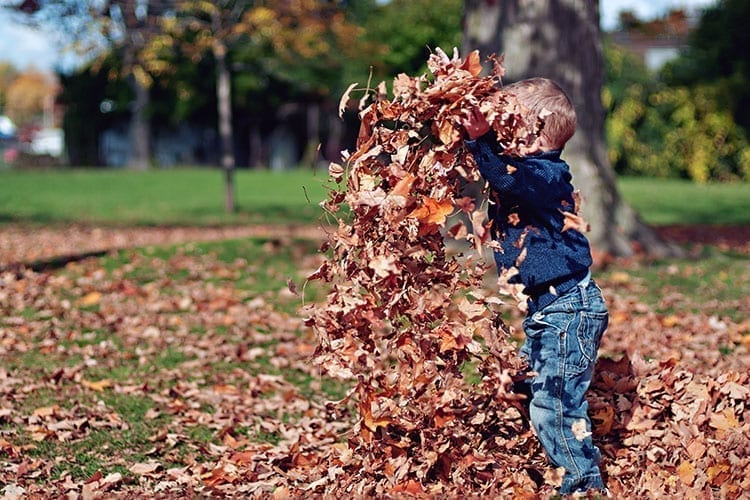 baby boy playing with leaves