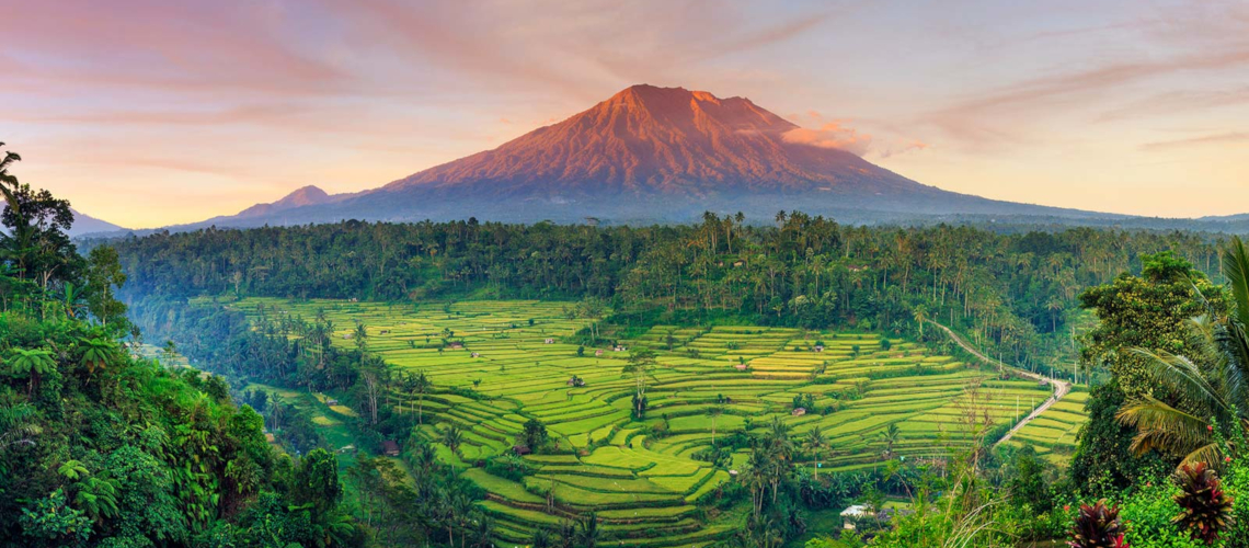 Agung Volcano Bali Paddy Field Little Guest Hotels Collection