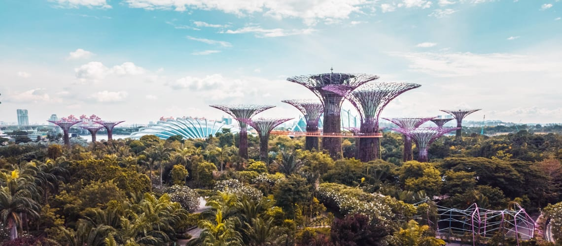 Little-guest-Singapour-Garden-by-the-Bay