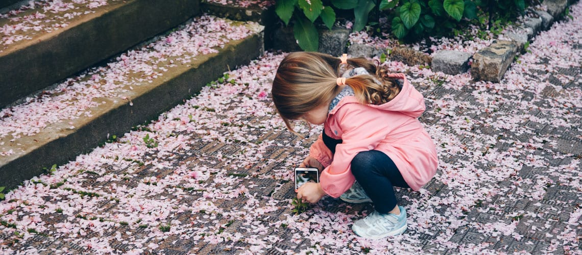 A little girl taking a picture of flowers