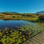 Lake and deck at Fancourt Hotel