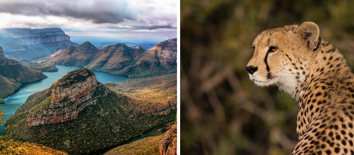 View on Blyde River Canyon from Three Rondavels; A leopard