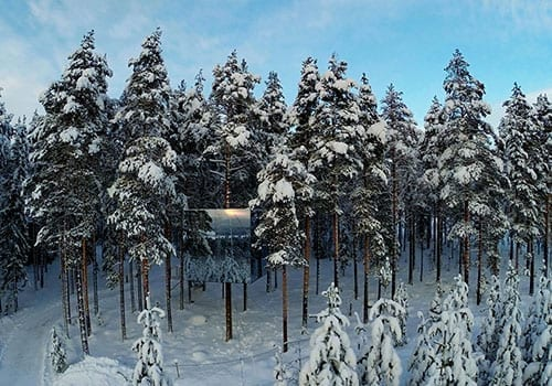 Treehotel AB in Lapland