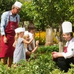 Masseria Torre Coccaro A familly learning about gastrononmy with the Chef of the hotel