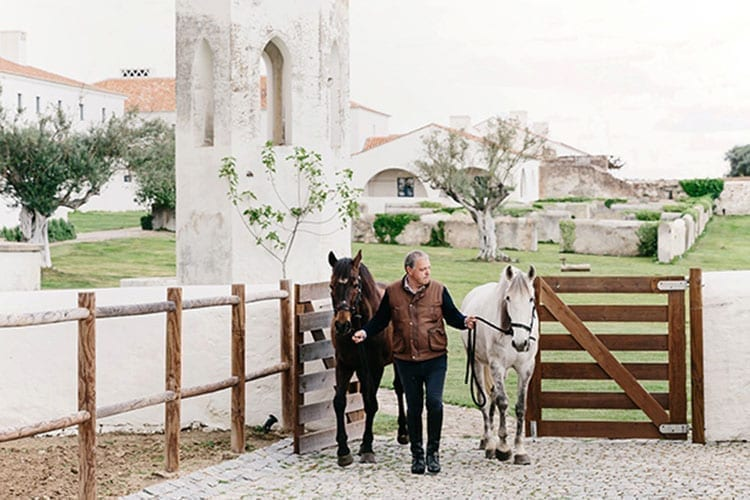 A man walking with horses at Cottages Sao Lorenco do Barrocal