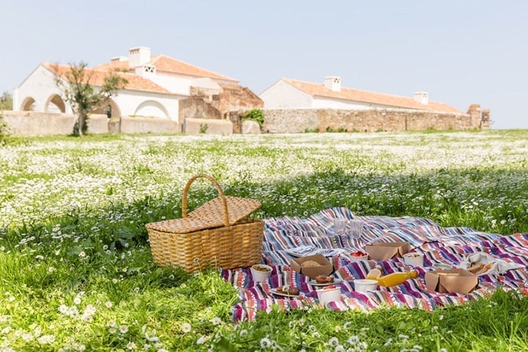 Pic nic in the Cottages Sao Lorenco do Barrocal garden
