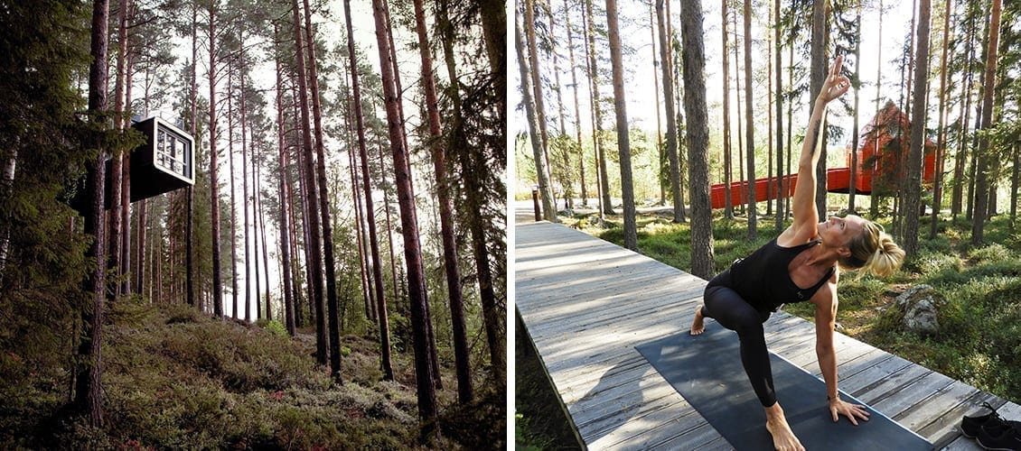 Yoga session under the trees in Lapland at Treehotel AB