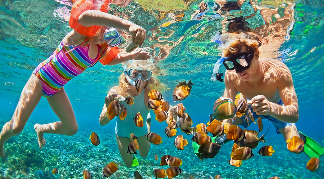 A dad and his kids snorkelling